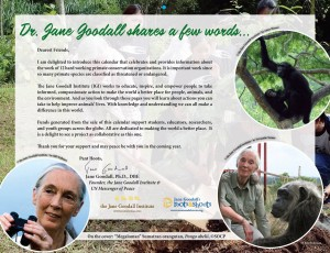Primate Connections - Jane goodall words